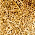 Cần bán 110m2 (4,36×25) đất mặt đương vỏ làng thôn Cổ Dương, Tiên Dương, Đông Anh